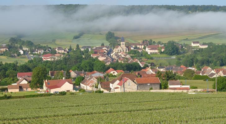 Le Champagne L.-J. Vendôme, Le Breuil, Vallée du Surmelin