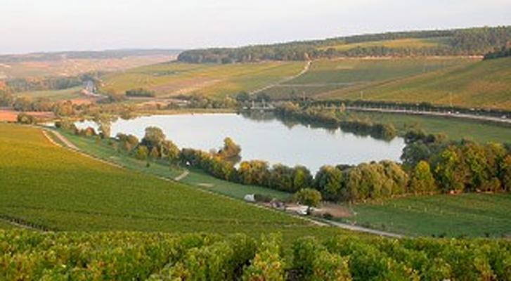 Domaine Michaut