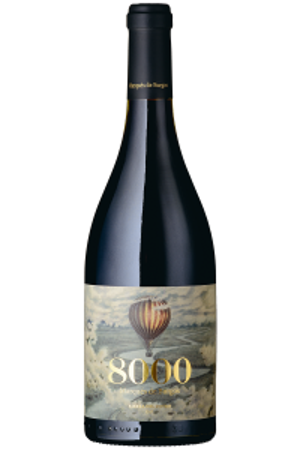 """8000"" Marqués de Burgos 2016"