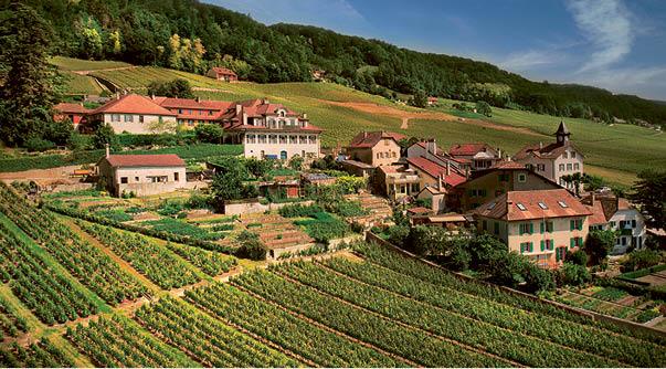Le Château de Vinzel