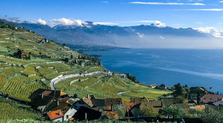 3 Tagesausflüge in die Schweizer Weinberge