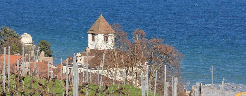 Domaine de Montauban